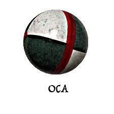 Oca: gli orari dei corsi per alfieri e tamburini