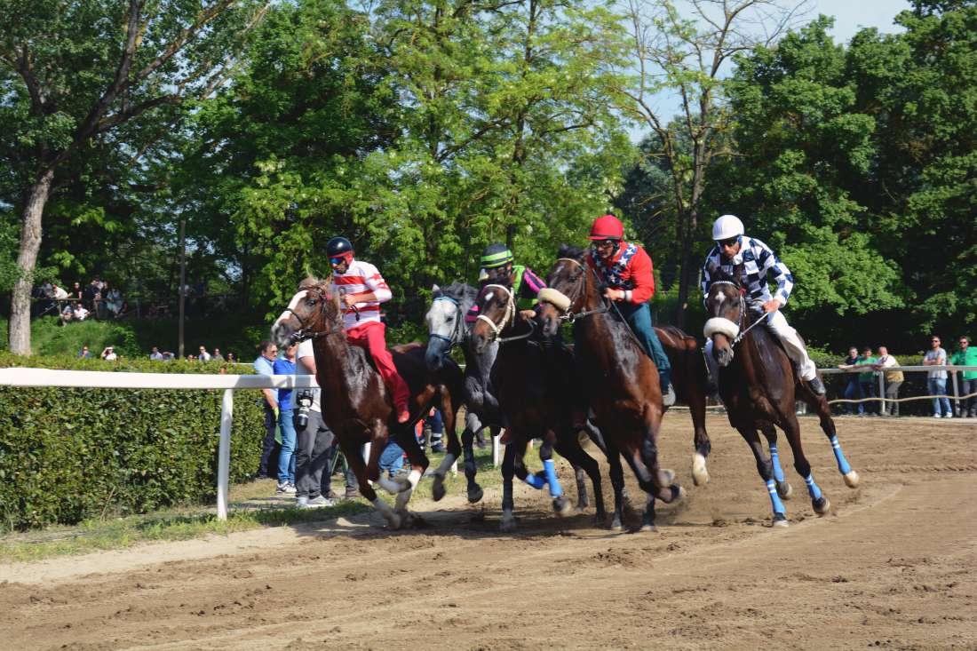 Fucecchio: il 25 luglio ci saranno le corse in Buca