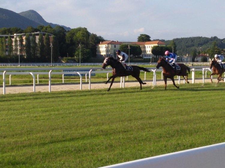 Corse regolari: oggi si corre a Sassari e Corridonia